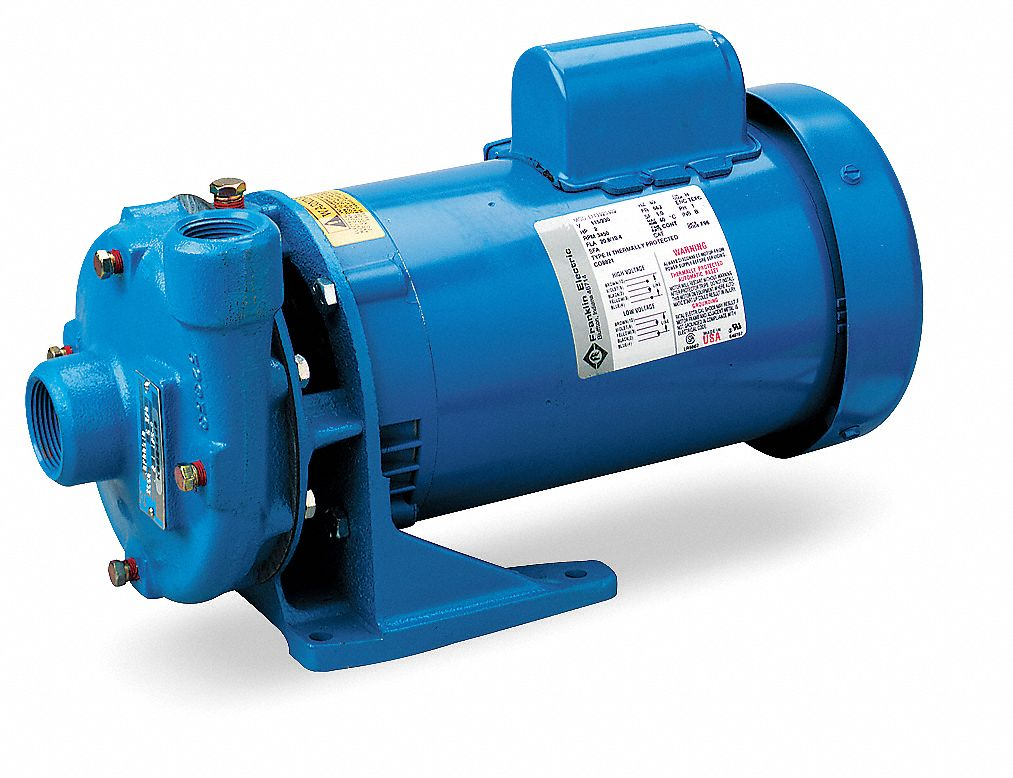 GOULDS WATER TECHNOLOGY Cast Iron 2 HP Centrifugal Pump, 208