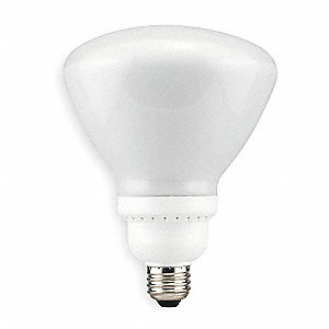 Screw-In CFL, R40