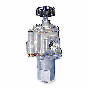 Gas Valve,Gas Pilot Safety,142,000 BtuH