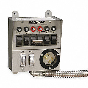 Manual Transfer Switch,60A,125/250V