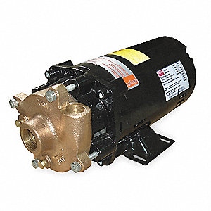 Bronze, Brass 3/4 HP Centrifugal Pump, 3 Phase, 208-230/460 Voltage