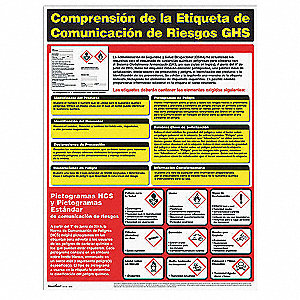 Poster,Spanish,18 in. H x 24 in. W