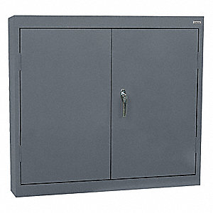 "Charcoal Wall Mount Storage Cabinet, 30"" Overall Height, 30"" Overall Width, Number of Shelves 2"