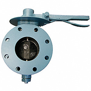 Butterfly Valve,Flanged,10 In,Locking