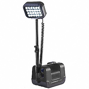 Remote Area Lighting System,24W,Black