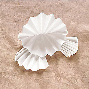 Pleated Qualitative Filter Paper,PK100