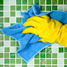 Green Cleaning Trends