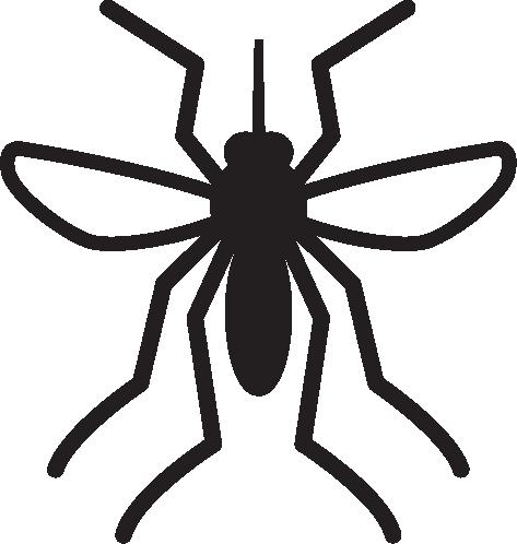 Mesquito-borne Diseases