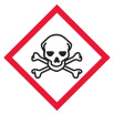Skull and Crossbones Hazard Symbol