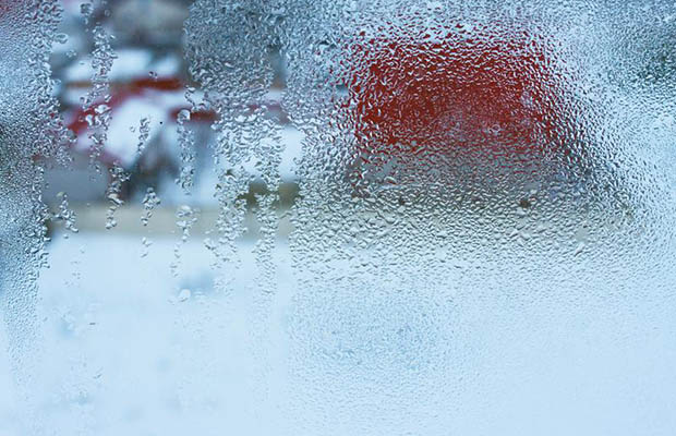Condensation Management: A Critical Component to Food Safety