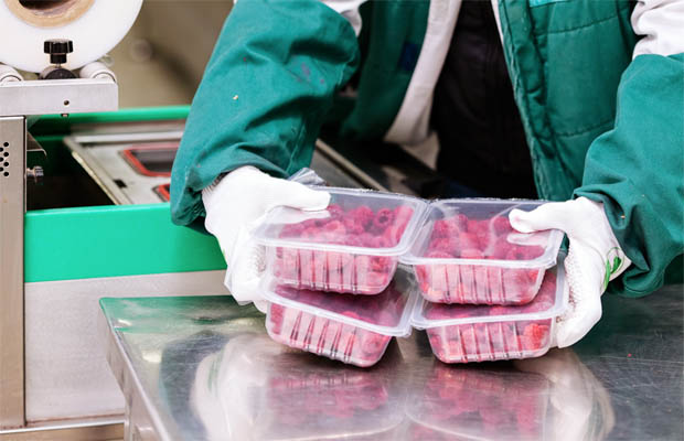 Continuous Improvement in Sanitary Design: Why Food Safety Is Always Evolving