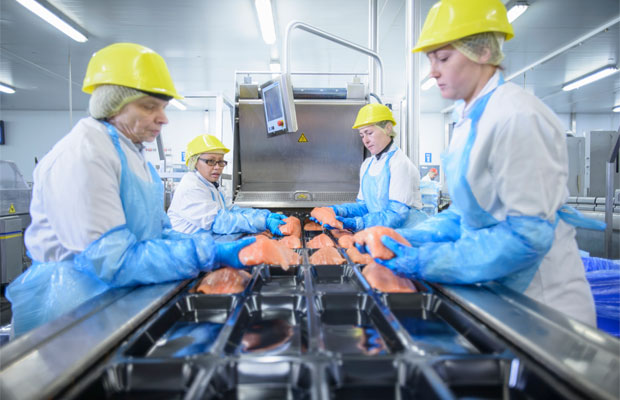 Dollars And Sense: Why Food Companies Should Embrace Innovation