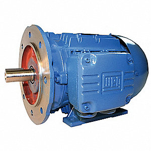 25 HP Metric Motor,3-Phase,3550 Nameplate RPM,460 Voltage,Frame 160L