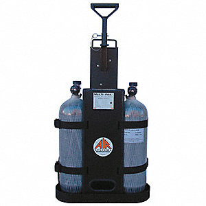 AIR CART 2 BOTTLE 2400PSI - 2 OUTLE
