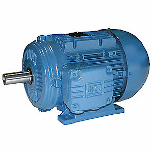 2 HP Metric Motor,3-Phase,1155 Nameplate RPM,460 Voltage,Frame 100L