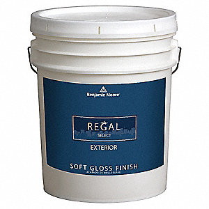 Exterior Paint,Soft Gloss,5 gal,Dash Of