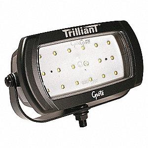 LAMP CLR LED WIDE FLOOD PATTERN