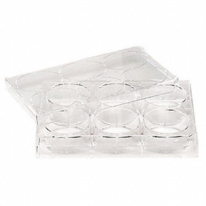 6 Well Tissue Culture Plate w/Lid,PK50