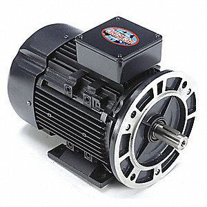 2 HP Metric Motor,3-Phase,3455 Nameplate RPM,230/460 Voltage,Frame D90SD