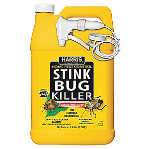 Stink Bug Killer,Stink Bugs