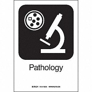 PATHOLOGY 10INHX7INW SS W/TXT