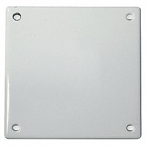PLATE SECURITY 2G BLANK