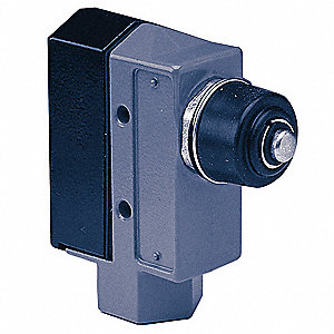 Plunger Style Door Switch,115/230V