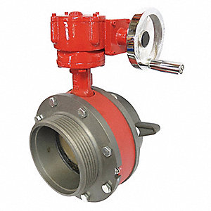 Butterfly Valve,6 In FNST,6 In MNST