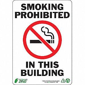 SIGN SMOKING PROHIBITED 10X7 PL
