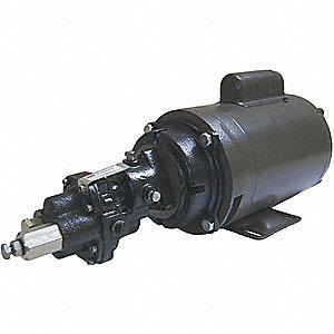 ROTARY GEAR PUMP, CAST IRON, 3/4 HP