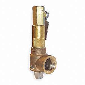 POP Safety Valve,1-1/4 x 2 In,450 psi