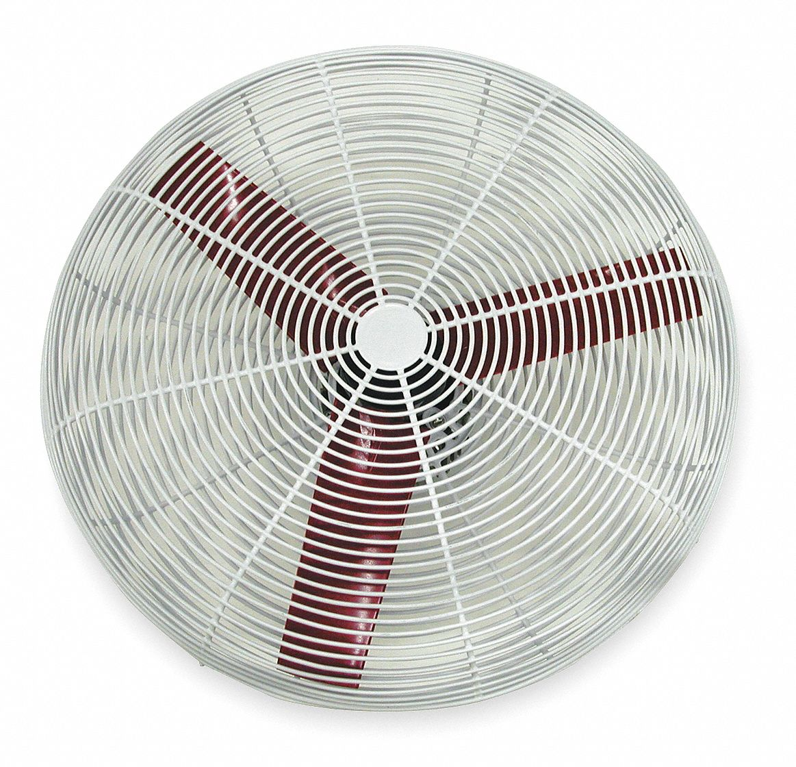 24 in Corrosion-Resistant Industrial Fan,  Stationary,  Ceiling, Wall,  115V AC