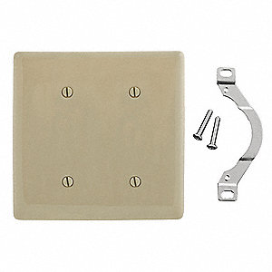 Blank Strap Mount Wall Plate, Ivory, Number of Gangs: 2, Weather Resistant: No