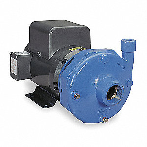 Cast Iron 10 HP Centrifugal Pump, 208-230/460VAC Voltage, 29.6-27.2/13.6 Amps