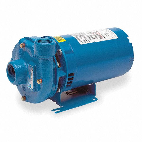 Goulds Water Technology Cast Iron 1 3 Hp Centrifugal Pump