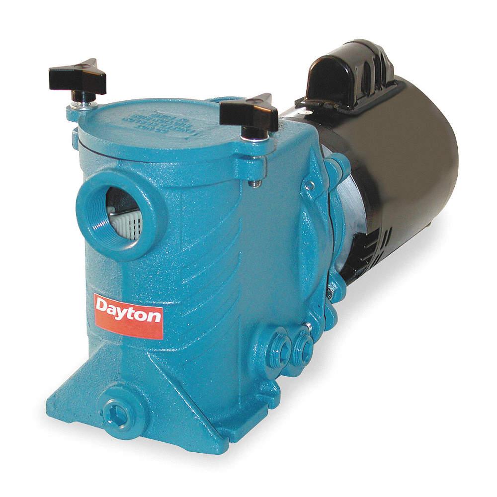 DAYTON 1 HP Swimming Pool Pump, Capacitor Start, 13.2/6.6 Amps ...