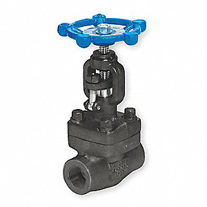 "Class 800 FNPT Globe Valve, Forged Carbon Steel, 2"" Pipe Size"