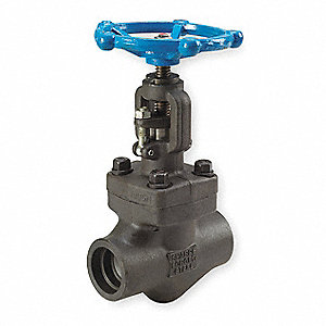 "Class 800 Socket Weld Globe Valve, Forged Carbon Steel, 3/8"" Pipe Size"