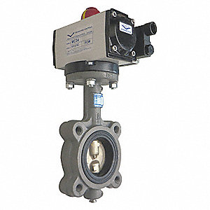 Butterfly Valve,Dbl Acting,Cast Iron,2In