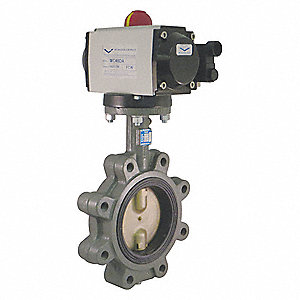 Butterfly Valve,Dbl Acting,Cast Iron,5In