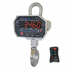 Crane Scale,LED,250 lb. Cap.