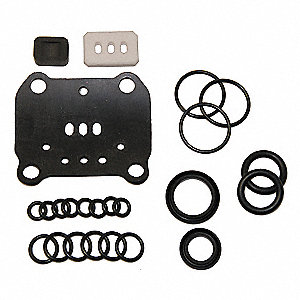 Pump Repair Kit,  Includes Diverter, Gaskets, O-rings, U-cup
