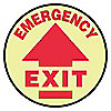 FLOOR SIGN,EMERGENCY,17 DIA.