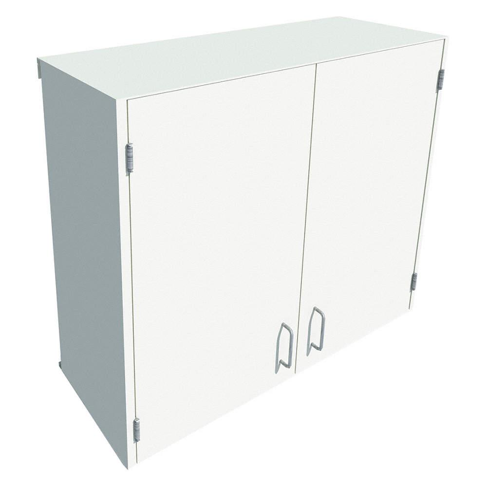 X 13 30 39 64 Steel Wall Cabinet