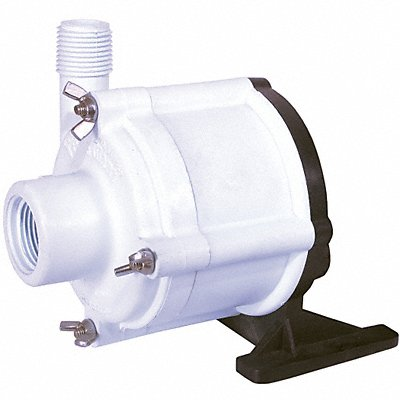24WL99 - Pump Head Without Motor