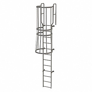 Tri Arc 15 Ft Steel Fixed Ladder With Safety Cage Top