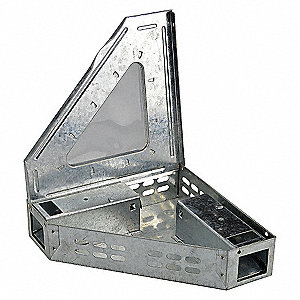 TRIANGLE MOUSE TRAP,CLEAR LID