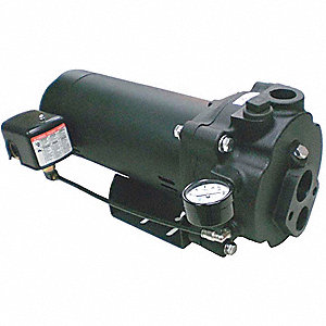 CONVERTIBLE JET PUMP,CI,1-1/2HP,115