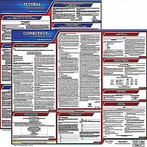 Labor Law Poster, CT Federal and State Labor Law, English, 3 yr.