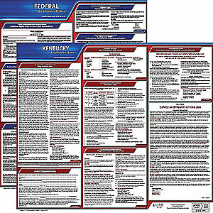 Labor Law Poster Kit, KY Federal and State Labor Law, English, None